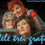 Тимишоара Три красавицы Trei gratii